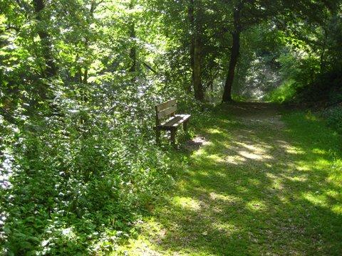 #18Bench-on-Lison-Path